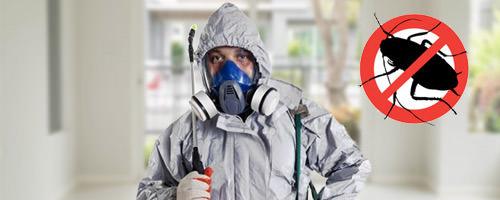 Специалист по уничтожению насекомых: тараканов, клопов, муравьёв. Дезинсектор.